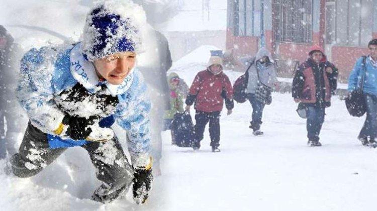 Kar Yağışı Nedeniyle Okullar Tatil Edildi