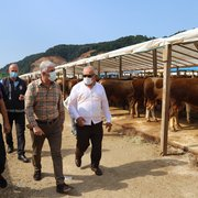 Başkan Sarıalioğlu, hayvan pazarında incelemelerde bulundu