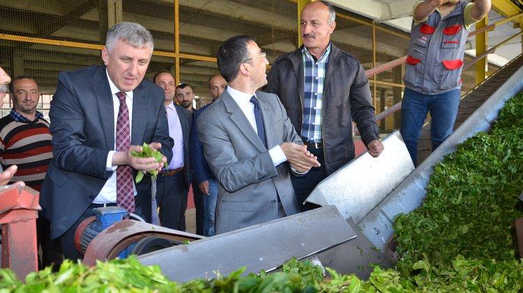 Başkan Sarıalioğlu, tüm üreticilere hayırlı olsun